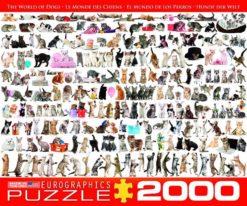 จิ๊กซอว์ 2000 ชิ้น The World of Cats euro 1