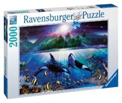 จิ๊กซอว์ 2000 ชิ้น Lassen Harmonious Orcas rave 13