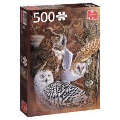 จิ๊กซอว์ 500 ชิ้น Find The Owls